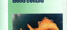 Borsa di studio in memoria del prof. Cesare Casella – Dottorato di Ricerca in Scienze Biomediche
