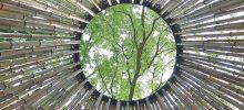 17-5 Attraverso la poesia del Novecento – Poeti in dialogo
