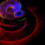 30-3 Frontiere della Fisica Fondamentale