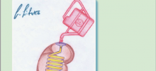 """30-5 Presentazione del libro """"Malattie Renali"""""""