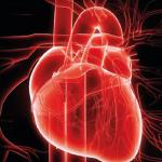 Corso – Aggiornamenti di cardiologia